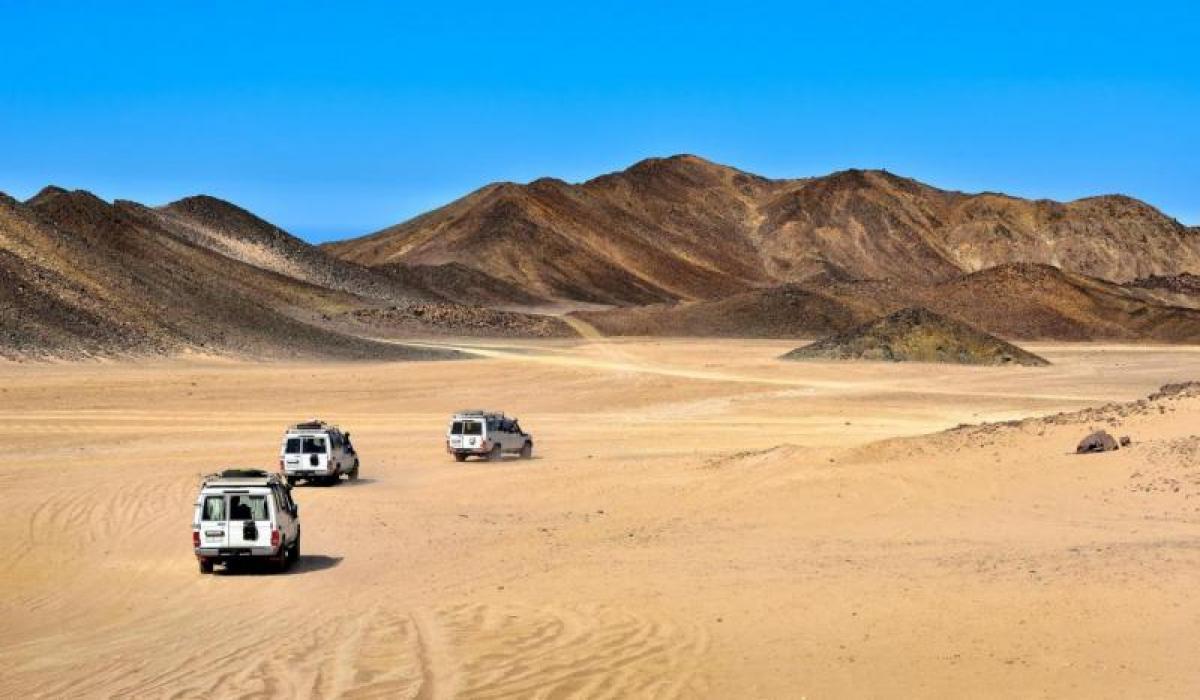 Сахара Парк сафари